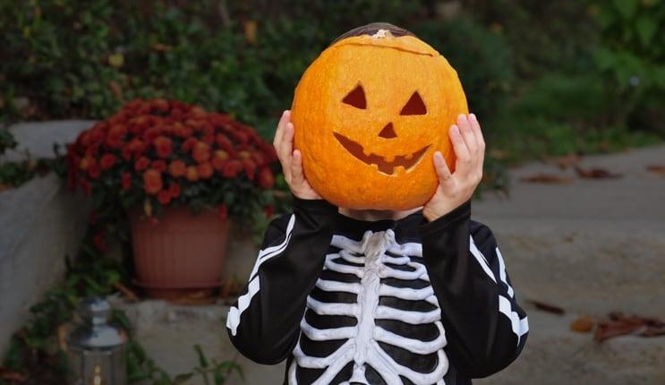 halloween tesco groceries