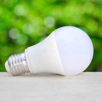 Lightbulbs - Tesco Groceries