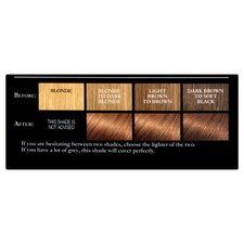 image 2 of L'Oreal Preference 5.3 Virginia Chestnut Brown
