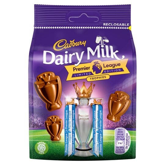 Cadbury Dairy Milk Trophy Bag 105G